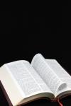 1415262_bible